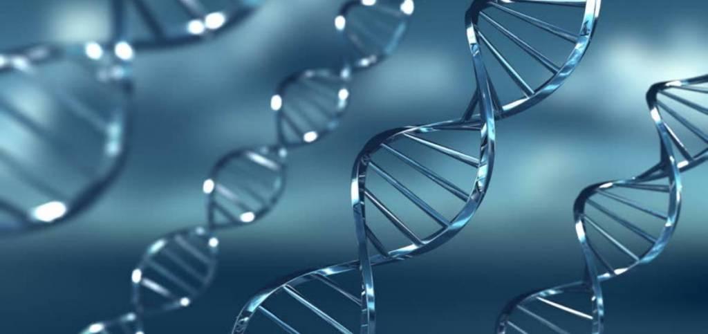 Virusi – najbrže evolurajuće jedinke na planeti