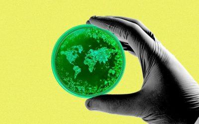 Grip: bolest koju izaziva najbrojnija biološka celina na planeti